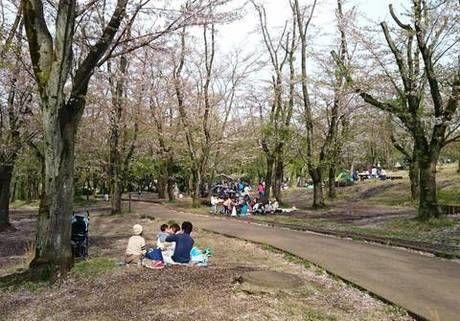 こども自然公園でピクニックを楽しむ家族連れ