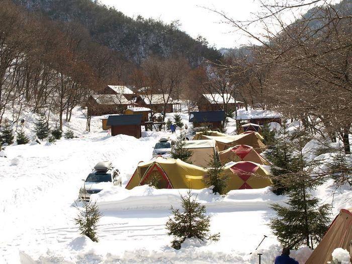 大鬼谷オートキャンプ場の雪の中のテント
