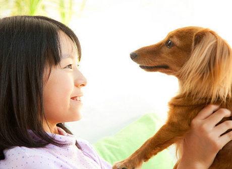 犬を抱き上げる少女