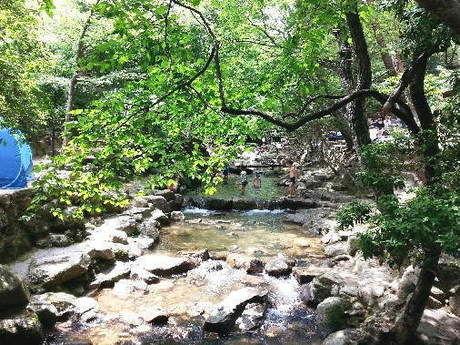 一里松キャンプ場の川の様子