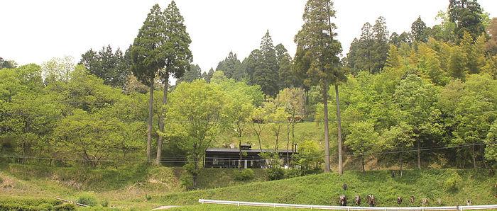 吉原ごんべえ村の遠景