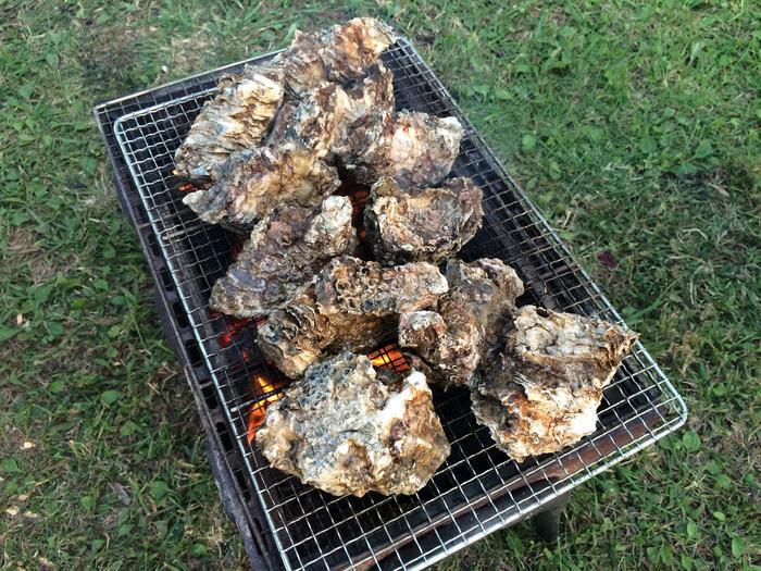 バーベキューで牡蠣を焼いている様子