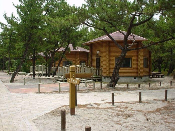 くにの松原キャンプ場のバンガロー
