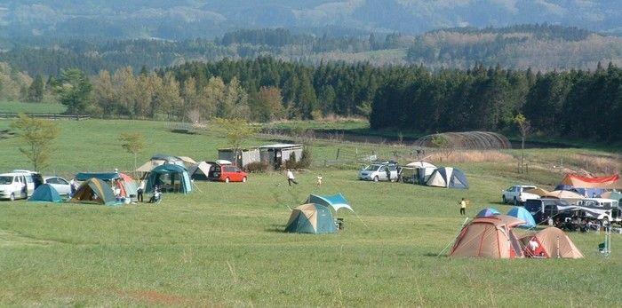 ボイボイキャンプ場の芝生のテントサイト