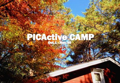 紅葉狩りイベント、PICAactiveCAMP