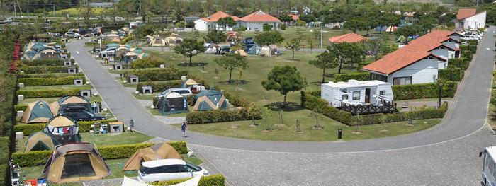 竜洋海洋公園オートキャンプ場のテントサイト