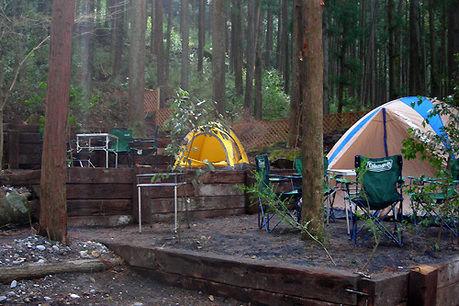 川井キャンプ場の林間テントサイト