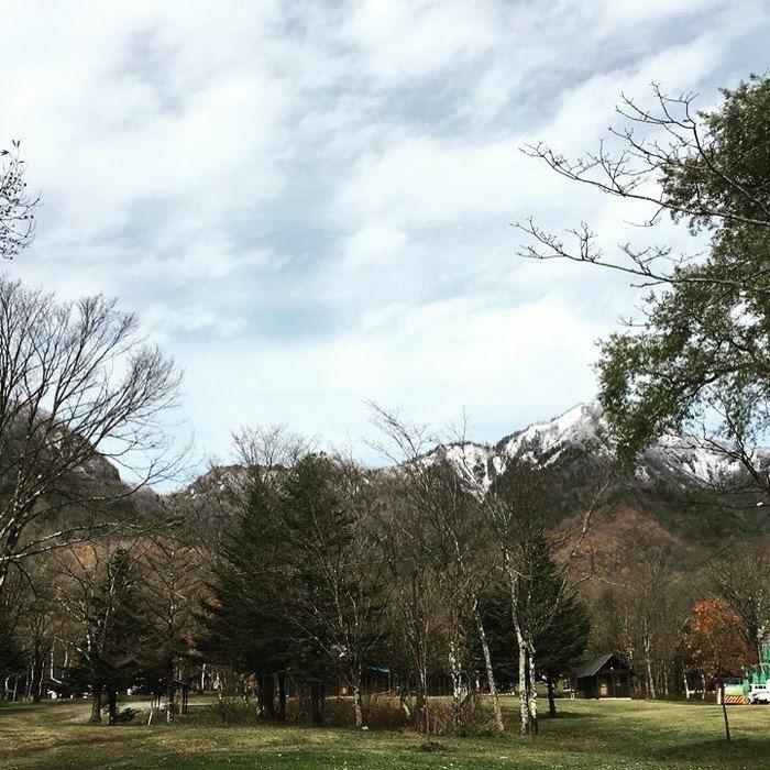 戸隠キャンプ場の林の写真