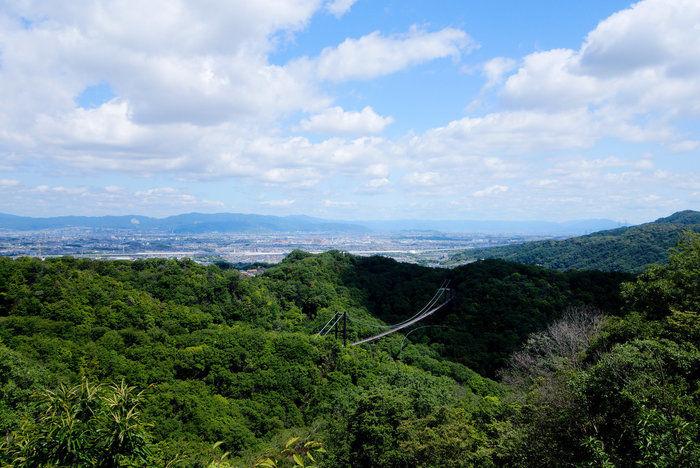 星のブランコと呼ばれる吊り橋の遠景