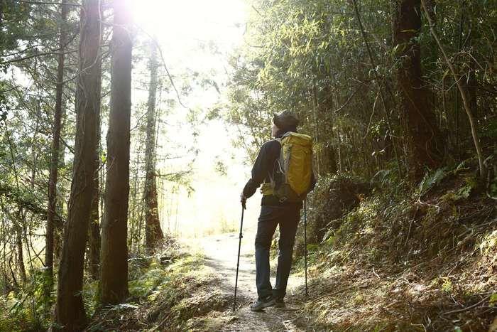 登山する男性の後姿
