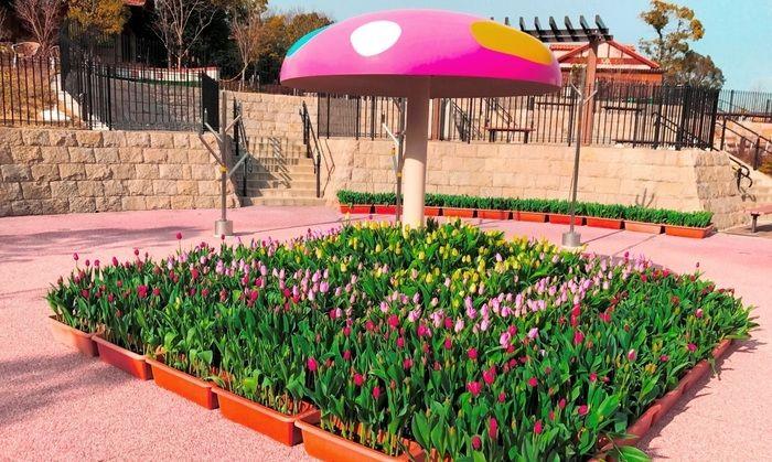 堺・緑のミュージアム ハーベストの丘のチューリップの花壇