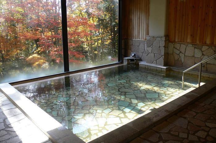 紅葉を見ながら入れる室内温泉の写真