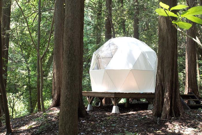 INN THE PARKのドーム型テント