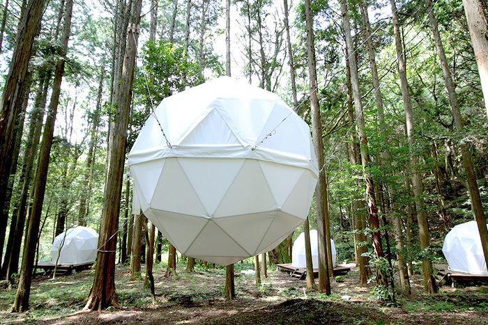 林の中の球体型テント