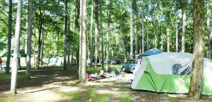 まほーばの森のテントサイト