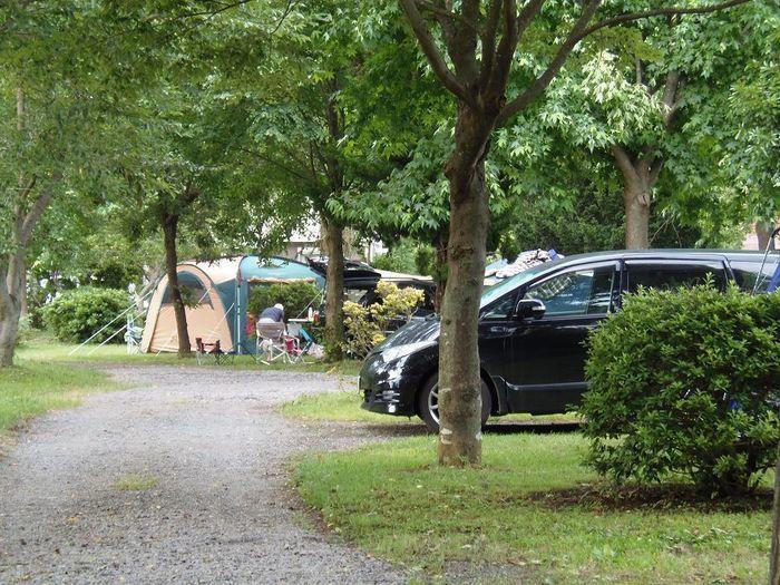 イレブンオートキャンプ場に映る車とテント