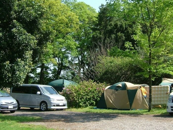 イレブンオートキャンプ場の映る車とテント
