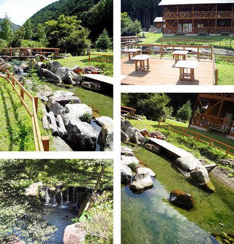 日置川ログハウスキャンプ村ウッディ&リバーの園内の様子