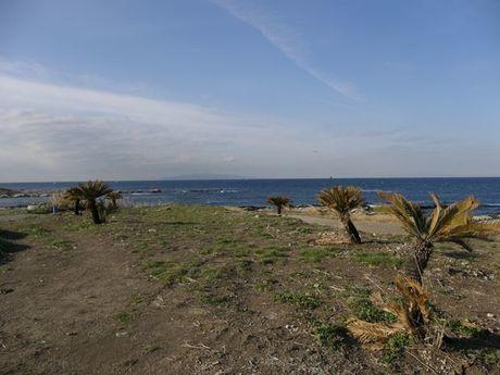 お台場海浜庭園の砂浜