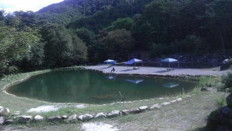 篠沢大滝キャンプ場の池