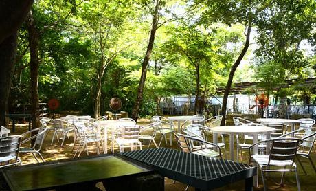 フォレストパーク メロンの森のバーベキュー広場