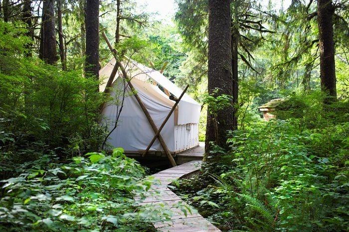 林間のグランピングサイト
