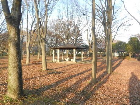 釜無川スポーツ公園の外観