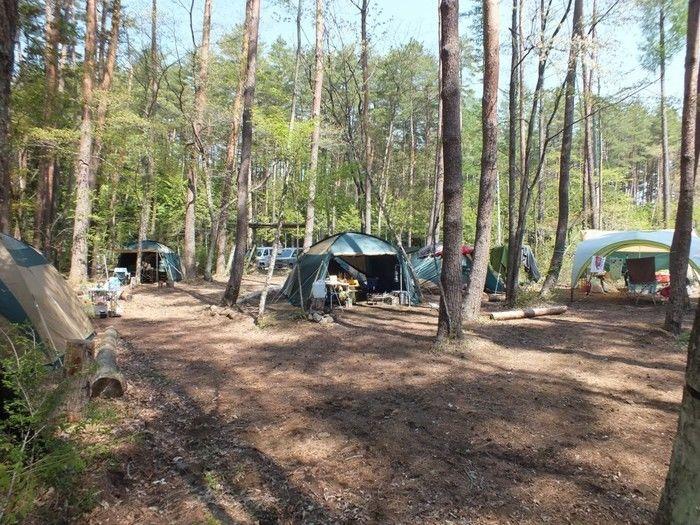 清水国明の森と湖の楽園のキャンプの様子