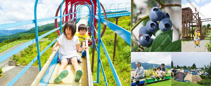 ゆとりすとパークおおとよオートキャンプ場の遊具で遊ぶ子供達