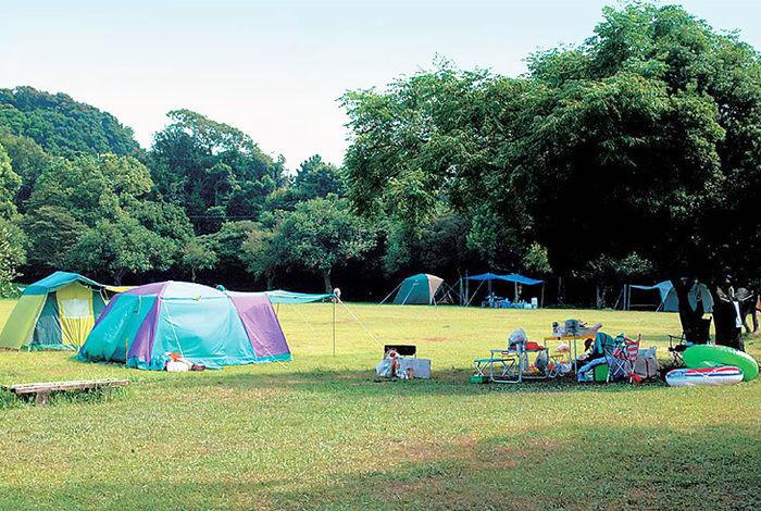 爪白キャンプ場でのキャンプの様子