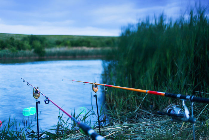 魚がかかるのを待つ2本の釣り竿