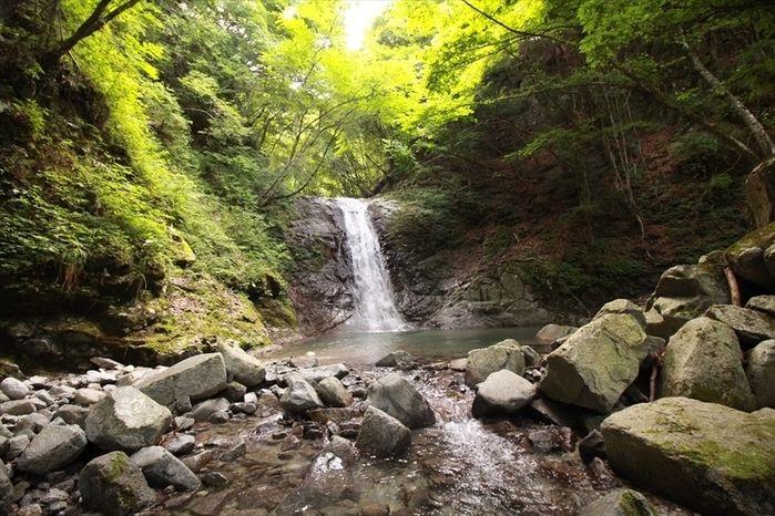 西丹沢大滝キャンプ場の滝