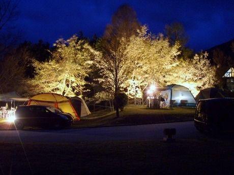 ライトアップされている夜の大佐山オートキャンプ場