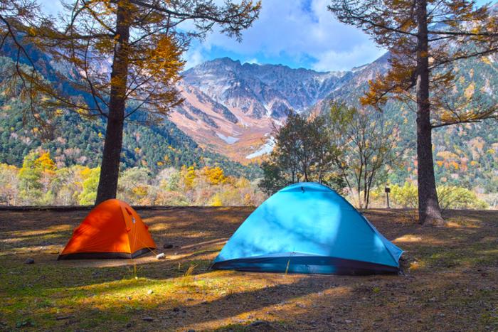 林間サイトの赤と青のテント