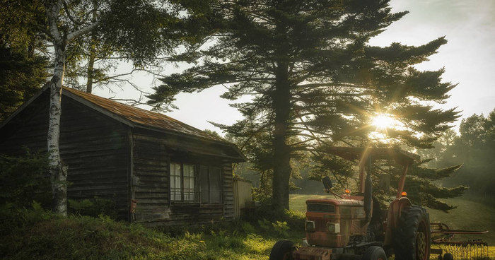 木の間からトラクターに差す夕日