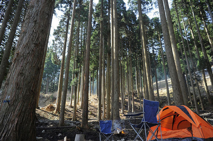 若杉高原おおやキャンプ場でのキャンプの様子