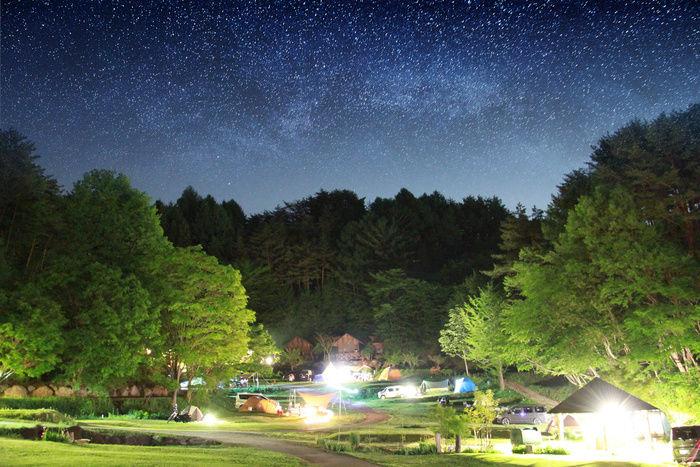 星の降る森の様子