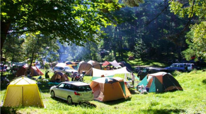 松原湖高原キャンプ場にテントが貼ってある様子
