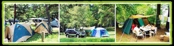 松原湖高原でテントが貼ってある写真