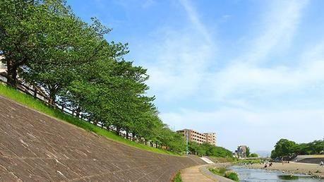 芥川桜堤公園の景観