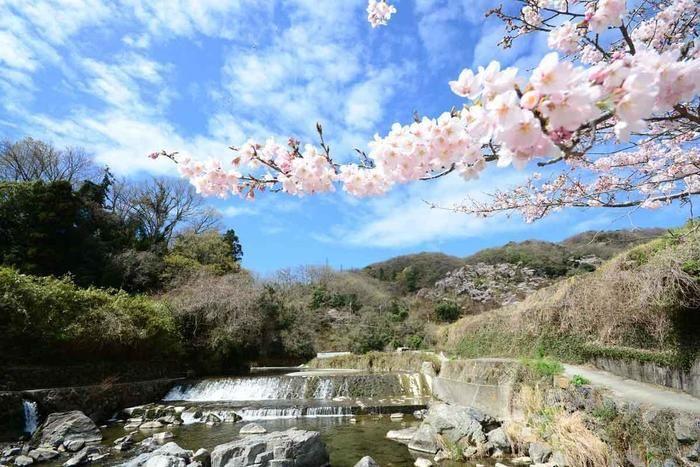 摂津峡公園の川の景観