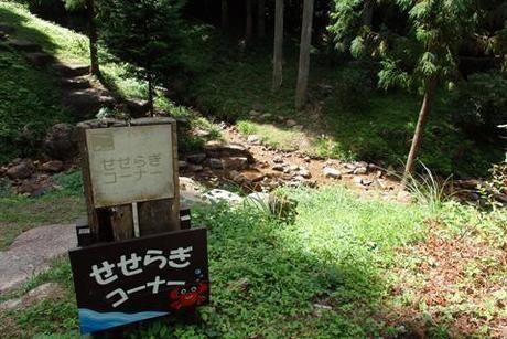 岩湧の森のせせらぎコーナー入り口