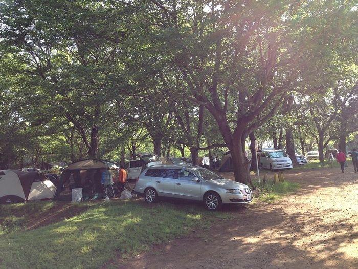 茎崎こもれび六斗の森のテントサイト