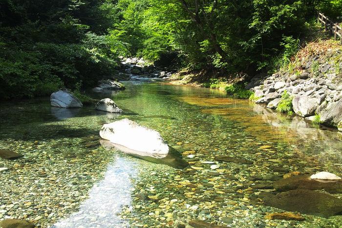 るぽぽかわさき・笹谷オートキャンプ場を流れる川