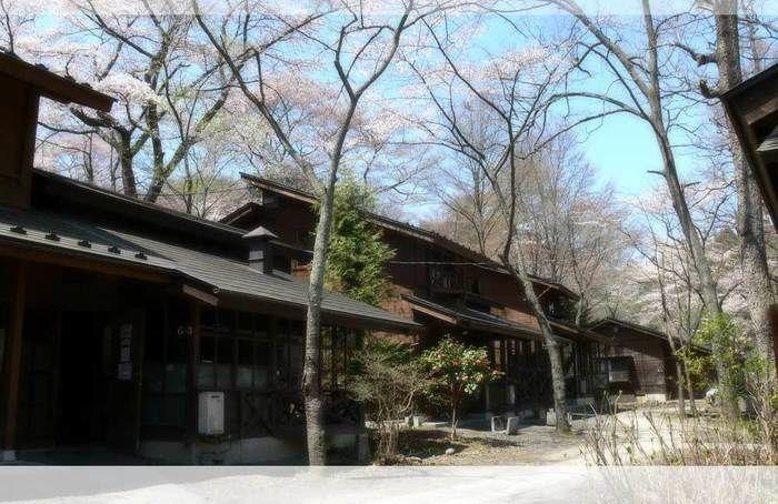ロッジ村 木の家のコテージ