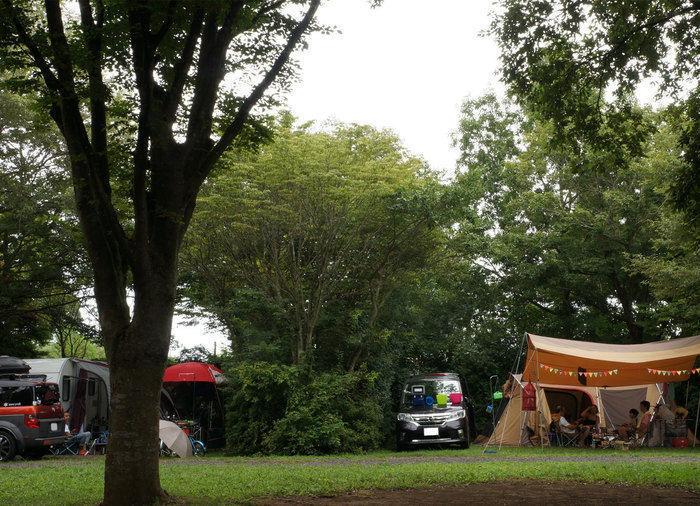 有野実苑オートキャンプ場でのキャンプの様子