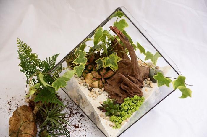オーナメントや植物を使った庭を造りの様子