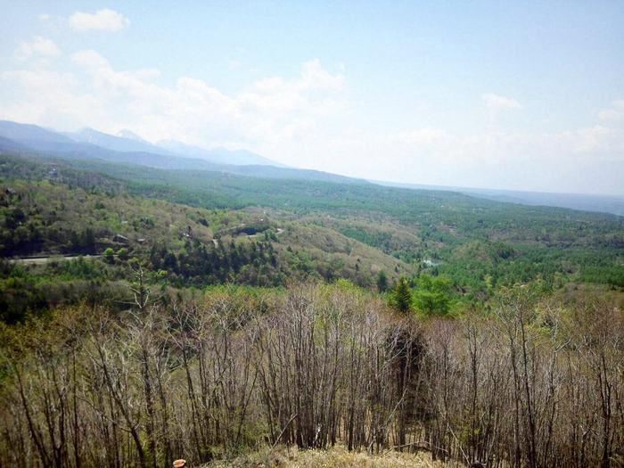 蓼科高原に広がる緑