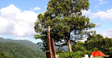 雨飾高原キャンプ場から見る景色
