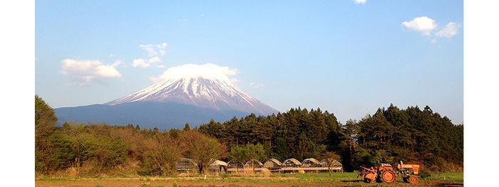 富士ヶ嶺おいしいキャンプ場の景観